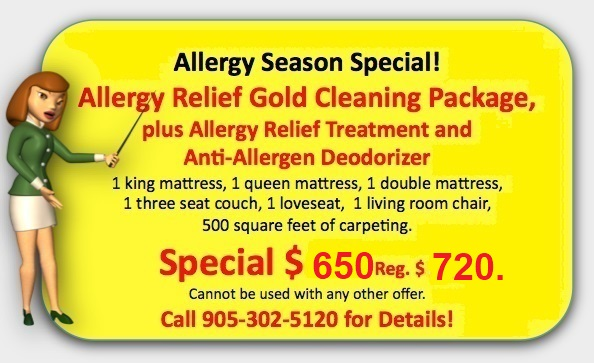 Allergy Relief Cleaning Special