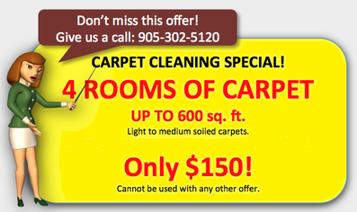 Economy Carpet Cleaning Special