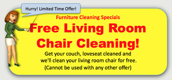 Furniture Cleaning Special