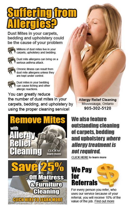 Allergy Relief Cleaning Services Dust Mite Carpet Cleaning